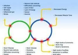 Ucsd Health Chart My Chart Ucsd Login Bedowntowndaytona Com