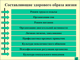 Основы здорового образа жизни студента Физическая культура в   Составляющие здорового образа жизни