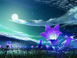 best 3d wallpapers ever.  Best Flower With Moon 3D Wallpaper Best 3d Wallpapers Ever
