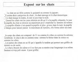 expose sur chat