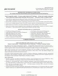 Information Technology Manager Resume Examples Information Technology Senior Project Manager resume s RS Geer Books 2
