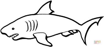 Small Picture Australian Shark coloring page Free Printable Coloring Pages