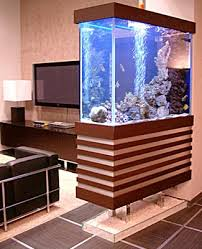 fish tank stand design ideas office aquarium. 3d interior visualization before buying an aquarium standaquarium ideasaquarium suppliesfish tanklarge fish tank stand design ideas office