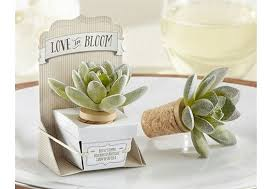 Succulent Bottle Stoppers