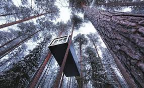 invisible tree house hotel. Treehotel Cabin - Treehotel, In North Sweden, Sweden Invisible Tree House Hotel