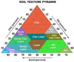 Apes Soil Lab Set 1 Jan 15 2016 Lessons Tes Teach
