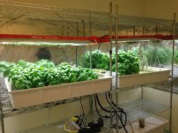 Hydroponics Herb Garden Kitchen Corporate Campus Farm Profiles Campus Farmers