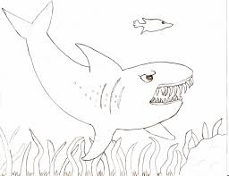 Small Picture Inspirational Tiger Shark Coloring Pages 66 With Additional Free