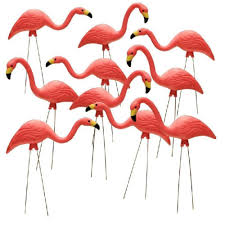flamingo garden statue. Interesting Flamingo Pink Flamingo 10Pack Inside Garden Statue K
