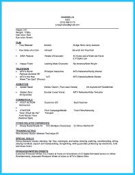 example ng resume  tomorrowworld coactor resume examples qualifications   example ng