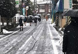 東京 都 世田谷 区 天気