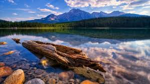 relaxing hd wallpaper lake calm transpa water dry wood stone pine forest mountains sky