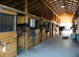 many of us horse owners keep our horses at our own homes safety is always the number one priority for any horse owner a barn safety check