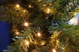 Warm Led Tree Lights
