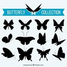 Butterfly Patterns Inspiration Butterfly Pattern Vectors Photos And PSD Files Free Download
