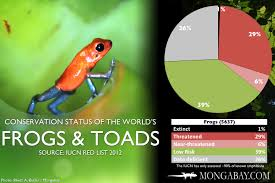 Chart The Worlds Most Endangered Frogs