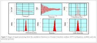 zetasizer technique in biochemistry omics international biochemistry analytical biochemistry correlation