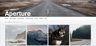 Tumblr Photography Themes 20 Best Photography Tumblr Themes With Gorgeous Designs