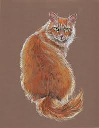 realistic cat drawing in pencil.  Pencil How To Draw Realistic Cats  The Perfect Cat Mark Menendez Colored  Pencil Techniques Inside Drawing In E