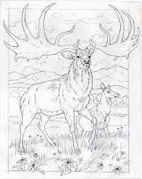 Small Picture Animal Coloring Pages National Geographic Coloring Page Books