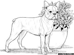 84 Drawing Dog Coloring Pages That Look Real Online Coloring Pages