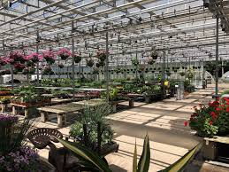 photo of garden woodbury ct united states magnificent selection