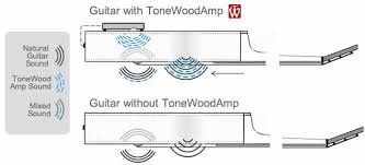 Tonewoodamp Official Site Reimagining The Acoustic Guitar