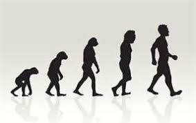 essays on evolution of man ungluedevolution of man   essay by banjoecalma   anti essays