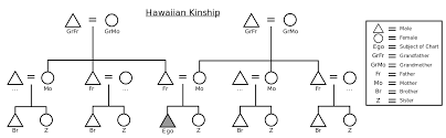 Anthropology Kinship Chart Hawaiian Kinship Wikiwand