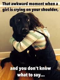 Quotes About A Girl And Her Dog Extraordinary Quotes About A Girl And Her Dog Elegant Quotes Quotes About A Girl