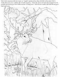 Small Picture Elk Coloring Page Coloring Home