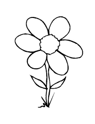 Small Picture Wild Grass Flower Coloring Page NetArt