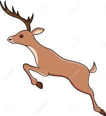 jumping deer vector. deer jumping stock vector - 13780564
