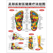 Reflexology Chart 1pc Standard Reflexology Charts Of Tcm Foot Acupoint Health Center Decorative Painting Sketch Map