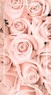 Pin Van Ethna Op Roses Sfondi Sfondi Rosa En Sfondi Per Cellulare