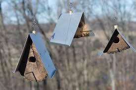 Rustic Birdhouses Rustic Log Birdhouses