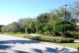 burns road palm beach gardens florida roadway landscaping jpg