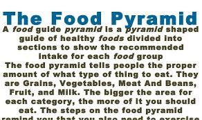 food and health 12 the food pyramida food guide pyramid