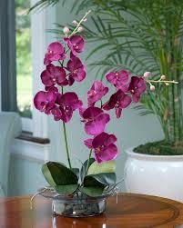 Cream Purple Phalaenopsis Orchid in elegant glass bowl