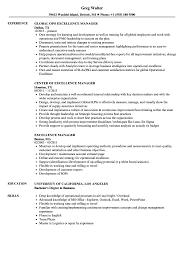 Excellence Manager Resume Samples Velvet Jobs
