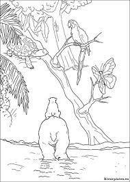 Lars De Kleine Ijsbeer Op Avontuur Kleurplaat 13104 Kleurplaat