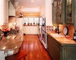 remodeled galley kitchens photos. remarkable unique galley kitchen remodel download gen4congress remodeled kitchens photos l