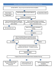 Flow Chart Title Employee Title Ix Flow Chart