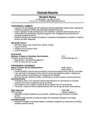 resume profile for customer service resume profile examples customer service fill print download