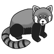 レッサーパンダ1モノクロ陸の動物無料イラスト素材