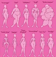 Female Body Types Chart Argau Female Body Type Chart