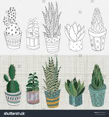 Cactus Embroidery Pattern Amazing Decorating Ideas