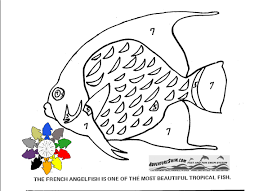 Small Picture Adventure Swim Fish Coloring Pages