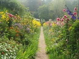 Wildflower Garden Design Set