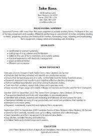 Resume Job Description Examples Resume Job Description Examples